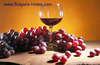 Bulgaria and Czech Republic to co-operate in the field of wine tourism