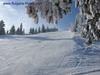 Bulgaria 'good value' for skiers
