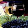 International Exhibition of Vine-Growing and Wine-Producing 2010, Plovdiv
